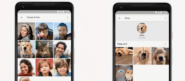 Resultado de imagen para Fotos, de Google, ya puede reconocer a tus mascotas